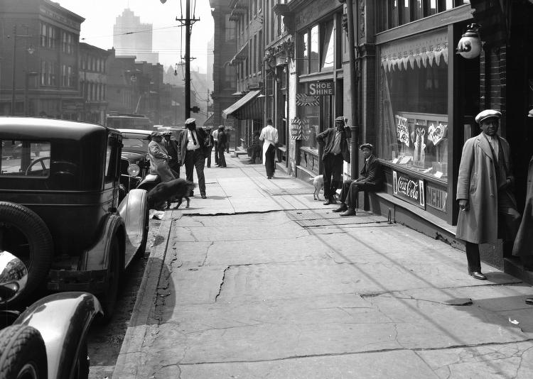 Dogs on Wylie Ave_1931