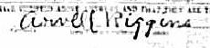 Arvell Riggins Signature