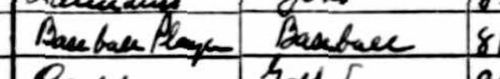 William Jones_1930 census_occupation